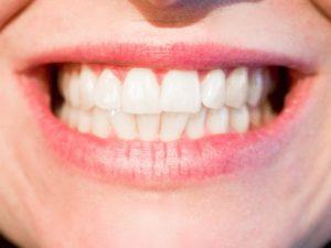 norridge dentist